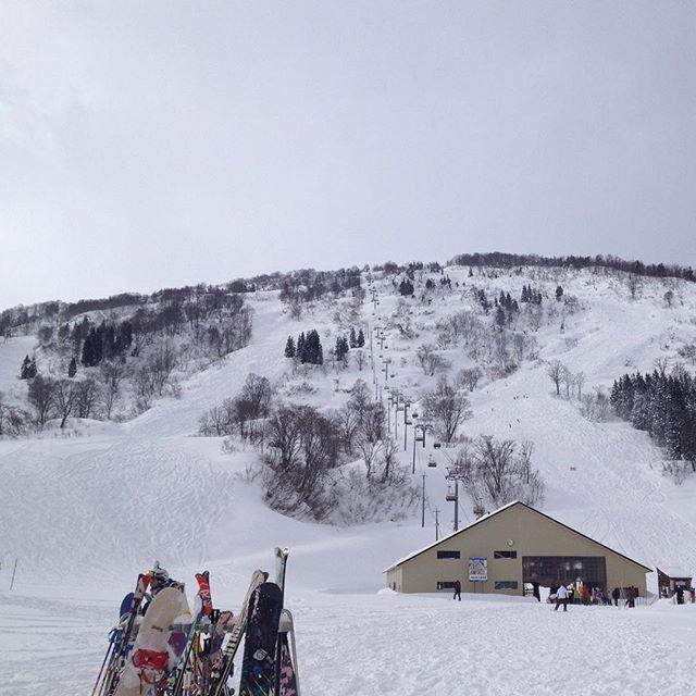 本日のシャルマン火打スキー場