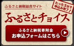 ふるさと納税サイト [ふるさとチョイス] | 新潟県糸魚川市[いといがわし]のふるさと納税で選べるお礼の品・使い道
